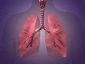 Hospital Marcelino Champagnat promove evento sobre tratamento de câncer de pulmão
