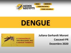 Aula: Dengue (Dra. Juliana Moroni)