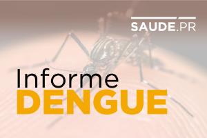 Sesa reforça importância dos cuidados preventivos contra a dengue durante o verão